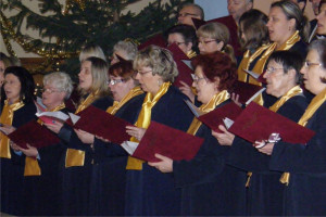 VoxCordis koncert